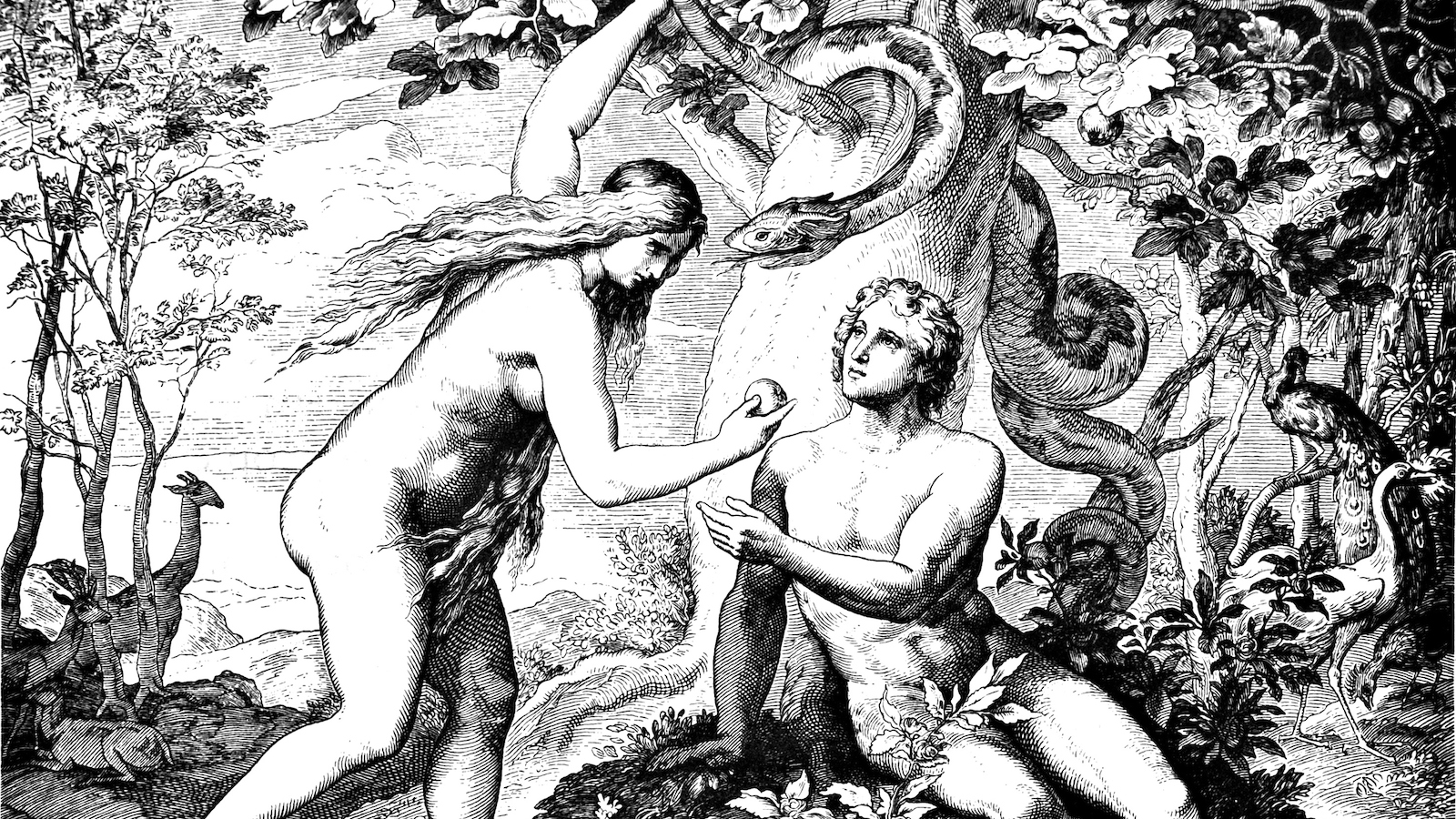 Depiction of Adam and Eve in popular culture