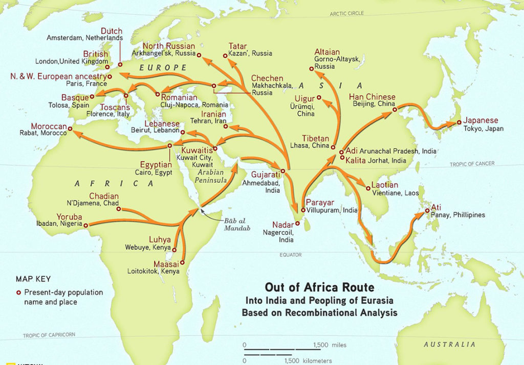 Modern human migration from Africa to Eurasia.